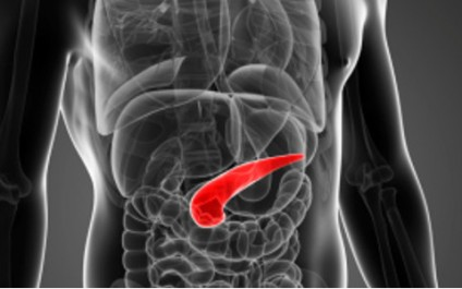Could exercise combat pancreatic cancer?